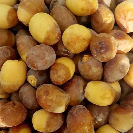 Barahi dates